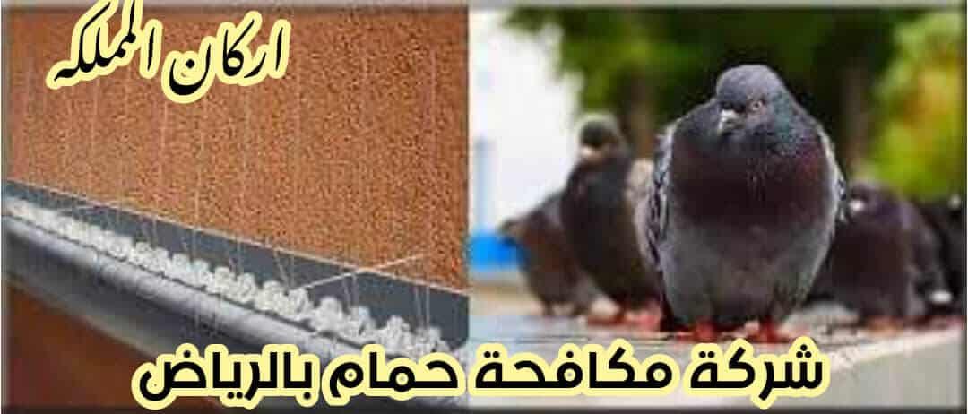 Photo of شركة مكافحة حمام بالرياض 0501587694 وتركيب طار حمام مع الضمان